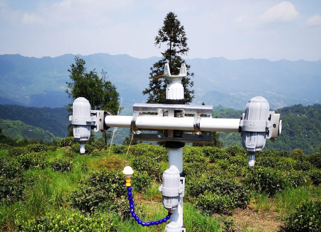 SenseCAP LoRaWAN wireless sensors deployed in the tea plantation