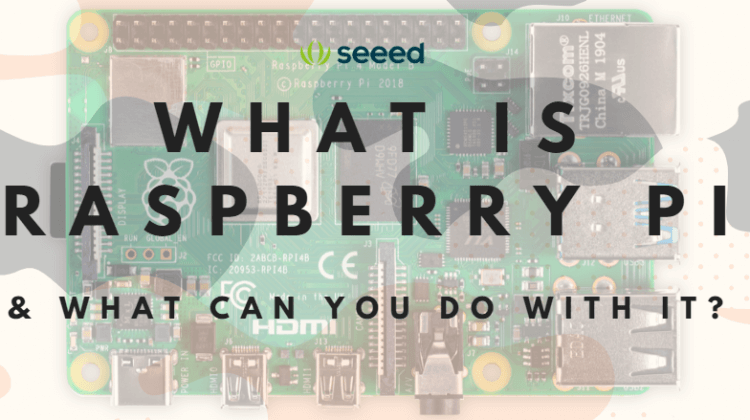 What Is Raspberry Pi & What Can You Do With It?